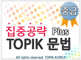 TOPIK Plus+ Grammar