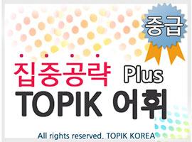 TOPIK Plus+ Vocabulary