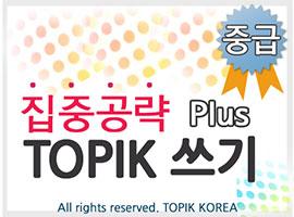 TOPIK Plus+ Writing